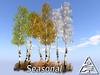 Young Birch group SEASONAL M/T 3LI+fern 1LI