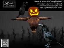 Crow, Scarecrow, pumpkin, head, Halloween