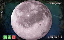 [MF] Mesh giant full moon (boxed)