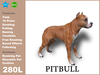 Pitbull box