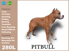 [TomatoPark]Pitbull Terrier 3.3 ( roaming + wearable)