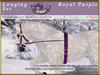 *E* Lunging Set [BOXED] RH Percheron Royal Purple