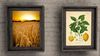 2 kitchen wall picture hangings Lemon and Wheat