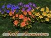 ~AB~ Autumn Fantasy Flower ~ Full Perm Mesh Plant ~ 1 LI
