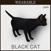 [TomatoPark] Wearable Black Cat