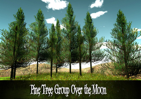 Pine Tree Group Over the Moon