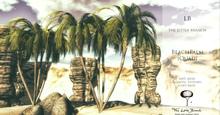 LB  Mesh BeachPalm Quad Vesion