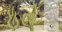 LB Mesh Cactus.v1