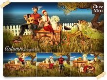 Autumn TricycleFun ♥ NEW Chez Moi