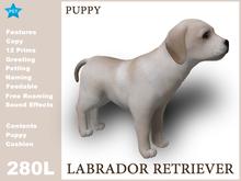 [TomatoPark] DEMO Labrador