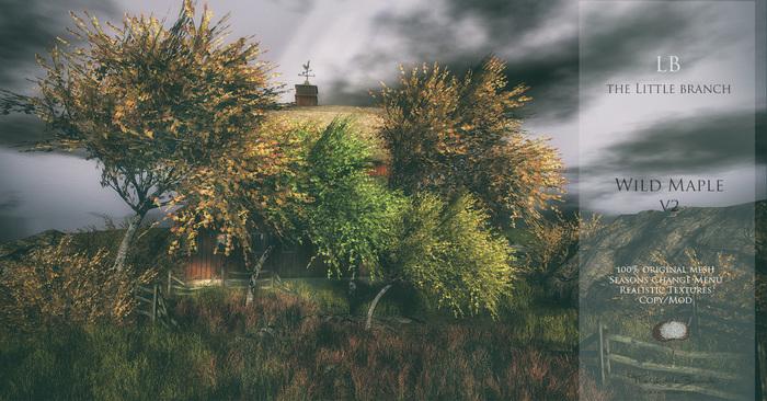 LB Wild Maple Tree 4 Seasons V2