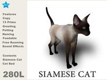 [TomatoPark]DEMO Siamese Cat