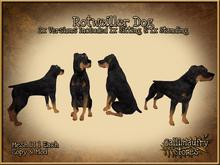 *GALLI* - MESH - Rottweiler x2 - One Dog Sitting & one Standing