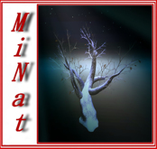 tree winter maple