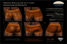 TB - Boxer_Halloween-Orange-TBOrange