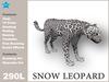 Snow leopard box