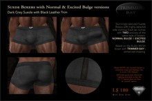 SUEDE BOXERS in Dark Gray suede with Black Leather Trim, includes NORMAL & EXCITED BULGE versions