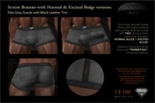 SUEDE BOXERS in Pale Gray suede with Black Leather Trim, includes NORMAL & EXCITED BULGE versions