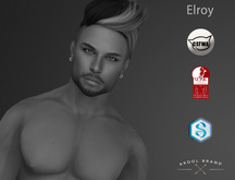 {Akool Brand} Elroy Skin NORMAL - Appliers - DEMO