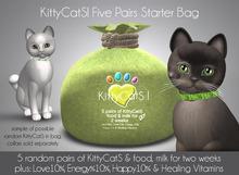 KittyCatS! 5 Pairs Of Kittens