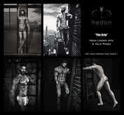 [Hedon] poses {The Grip} Ladder with 5 Male Poses