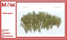 MN yellow grass 1 prim