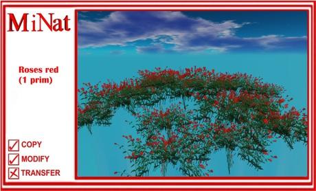 MN Roses red (1 prim)