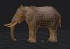 Elephantwireframe