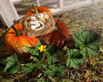 Aphrodite sweet rest- Harvest decoration with sleeping chimpunk