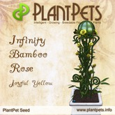 PlantPet Seed [Infinity Bamboo Rose *Joyful Yellow*]