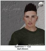 Eyebrows 1 - Cut