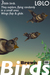 Three Little Brown Birds: Flying & Animated