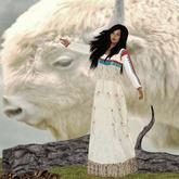 ~LTC~Native Dreams Box