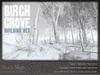 Skye birch winter