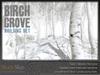 Skye birch winter 2