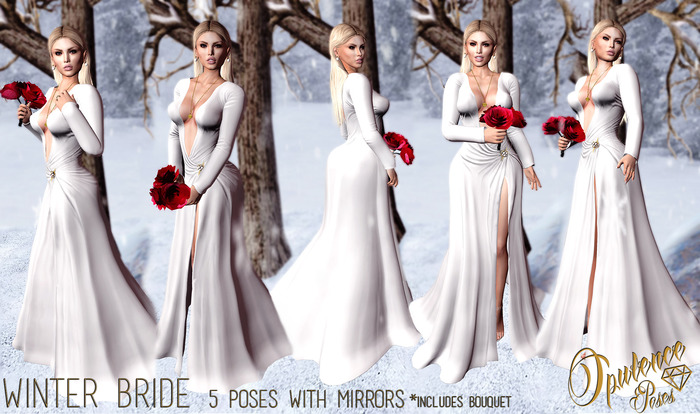 Opulence Poses - Winter Bride