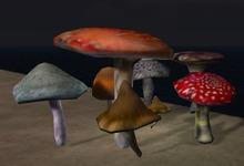 Giant 8 Mushroom cluster A one prim
