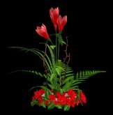 Floral Arrangement - Xmas