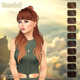 /Wasabi Pills/ Kendall Mesh Hair - Browns