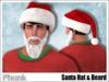 Mp santa hat   beard