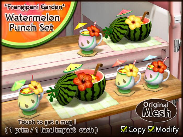 *FG* Watermelon Party {Watermelon Punch Set}