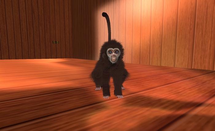 Baby Spider Monkey Avatar Brown
