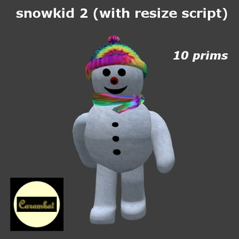 snowkid 2 (with resize script)