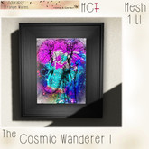 ~ASW~ The Cosmic Wanderer I
