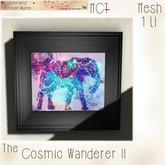 ~ASW~ The Cosmic Wanderer II