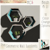 ~ASW~ The Geometric Wall Succulents