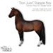 "[Teegle] ""Don Juan"" Dapple Bay Skin for Teegle Horse"