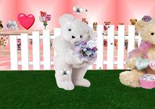 Teddy Bear Happy Mothers Day