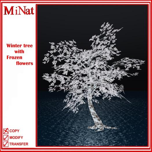 MN Winter tree with Frozen flowers