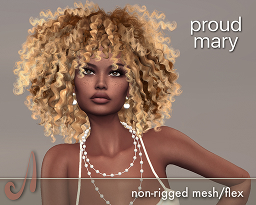 AD - proud mary - dark blondes